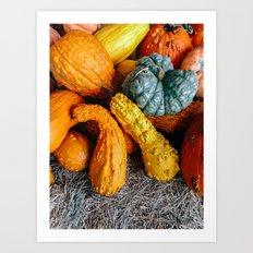Squashes and Pumpkins for Halloween Art Print