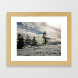 Snow and larch Framed Art Print