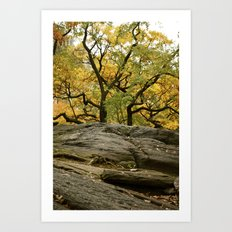 Central Park in the Fall Art Print