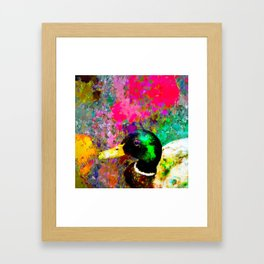 mallard duck with pink green brown purple yellow painting abstract background Framed Art Print