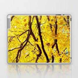 Fall Branches, Golden Yellow Linden Tree Laptop & iPad Skin