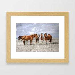 Hooves In The Sand Framed Art Print