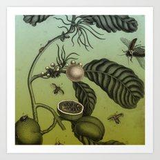 Bugs on Plants Art Print
