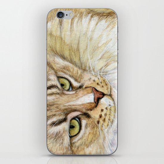 Maine coon cat - Soft portrait 725 iPhone & iPod Skin