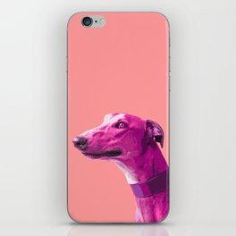 Pink Greyhound. Pop art dog. iPhone Skin