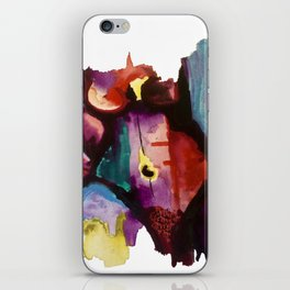 Clothed in Color iPhone Skin