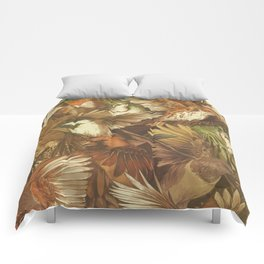 Red-Throated, Black-capped, Spotted, Barred Comforters