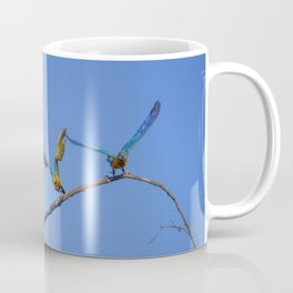 Birds from Pantanal Arara canindé, juntos é bem melhor Coffee Mug