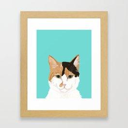 Calico Cat - Cute cat black, white, tan, orange tabby cat, cute kitten Framed Art Print