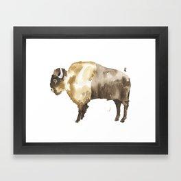Bison Framed Art Print