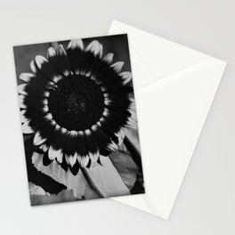Honey Bee on Mexican Sunflower, Tuscany, Italy black and white photograph / photography Stationery Cards