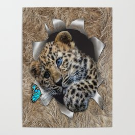 Baby Leopard & Blue Butterfly Poster