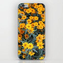 Little Orange Flowers iPhone Skin