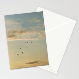 In Flight #7 Stationery Cards