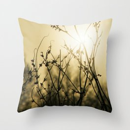Sunrise Branches Throw Pillow