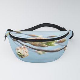 Spring At The Lake Fanny Pack