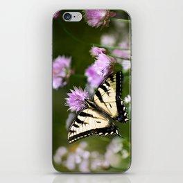 Swallowtail Butterfly iPhone Skin