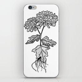 Chrysanthemums iPhone Skin