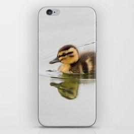 Duckling swimming iPhone Skin