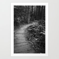 The Pathway Art Print