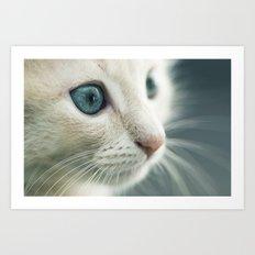 Blue eyes Details Art Print