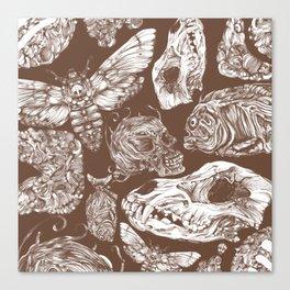 Bones in Brown Canvas Print