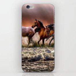 Animal Horses Fauna iPhone Skin