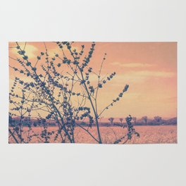 Imperfect Beauty (Beginning of Spring, California Countryside Farm) Rug