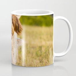 Brown Roan Italian Spinone Dog in Action Coffee Mug