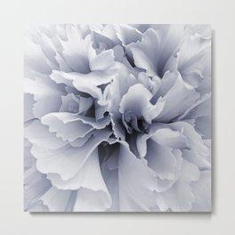Grey Peony Bloom Metal Print
