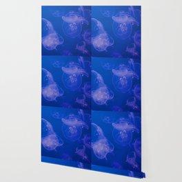 Jellyfish Monterey Blue Wallpaper