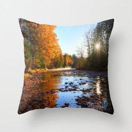 Salmon Sanctuary - Adams River BC, Canada Throw Pillow