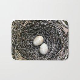 Brown Thrush Eggs Bath Mat