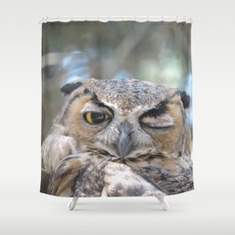 Owl Wink Shower Curtain