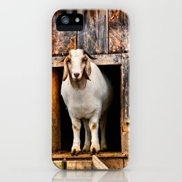 Goat Standing in Barn Loft Doorway iPhone Case