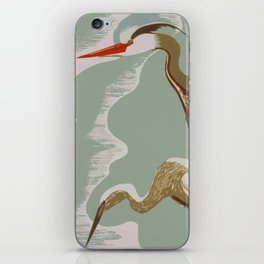 Visit the Zoo - African Birds iPhone Skin