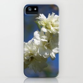 Deutzia Cream Petals Against Blue Sky iPhone Case