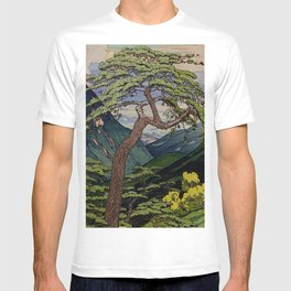 The Downwards Climbing T-shirt