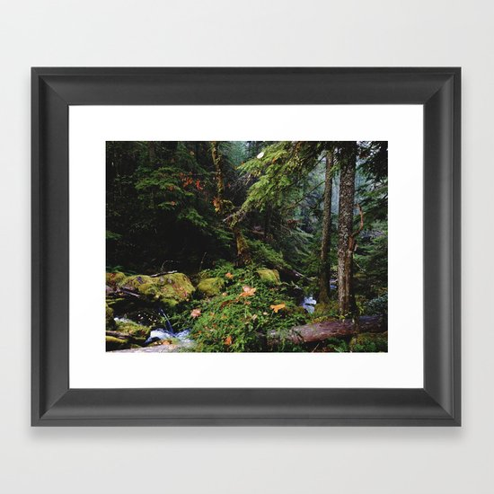 Late Fall Forest Framed Art Print