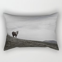 A Pony in the Pyrenees Rectangular Pillow