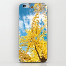 Dream Of Yellow II iPhone & iPod Skin