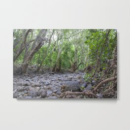river lava rock Metal Print