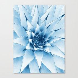 effect Canvas Print