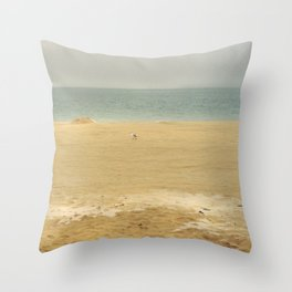 landscape 005: lone seagull Throw Pillow