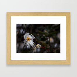 unterwegs_1284 Framed Art Print