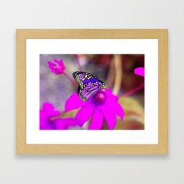 Moon Butterfly Framed Art Print