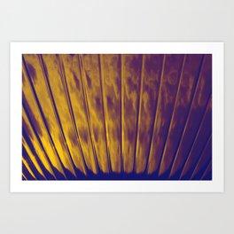 prospect002 Art Print