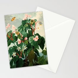 Pink Floral The Oblique-Leaved Begonias : Temple of Flora Stationery Cards