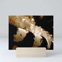 Feather and Quartz Mini Art Print