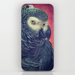 Gray Parrot iPhone Skin